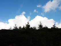 Den stora himlen Arkivfoton