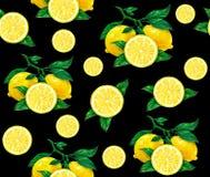 Den stora illustrationen av den härliga gula citronen bär frukt på en svart bakgrund Teckning för vattenfärg av citronen seamless Royaltyfri Foto