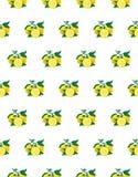 Den stora illustrationen av den härliga gula citronen bär frukt på vit bakgrund Teckning för vattenfärg av citronen seamless mode royaltyfri illustrationer