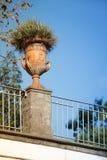 Den stora lerablomkrukan med en grekisk prydnad på balustraden över parkerar och blå himmel royaltyfri bild