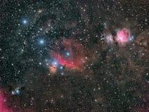 Den stora Orion Nebula och vännerna Arkivfoton