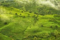 Den stora Pangalenganen, västra Java, Indonesien arkivbild