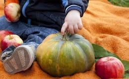 Den stora pumpa, äpplen och handen av barnet/behandla som ett barn Arkivfoton