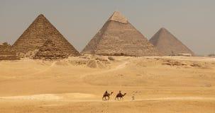 Den stora pyramiden med kamlet royaltyfria foton