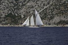 Den stora segelbåten på seglar mycket Royaltyfri Bild