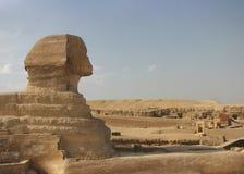 Den stora sfinxen av Giza, Kairo, Egypten arkivbild