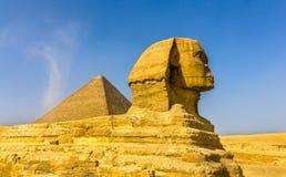Den stora sfinxen och den stora pyramiden av Giza Royaltyfri Fotografi