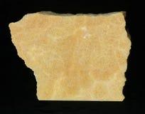 Den stora stenen och vaggar gul isolerad och svart bakgrund för bärnsten royaltyfri foto