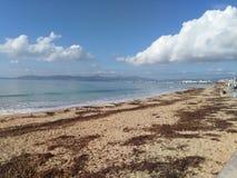 Den stora stranden Arkivfoto