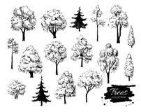 Den stora uppsättningen av handen drog trädet skissar konstnärlig teckning stock illustrationer