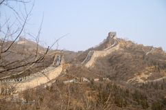 Den stora väggen av Kina med karga träd i förgrunden Arkivbilder