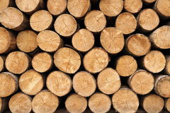 Den stora väggen av staplat trä loggar uppvisning av naturlig missfärgning Arkivfoto