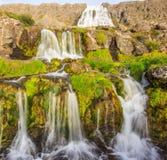 Den storartade sommarsikten av den Dynjandifoss Dynjandi vattenfallet, juvlar av Westfjordsen, Island Den största vattenfallet i  Fotografering för Bildbyråer