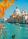 Den storslagna kanal- och BasilicaSanta Maria dellaen saluterar, Venedig, Italien Arkivbilder