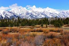 Den storslagna Teton nationalparken med snön täckte på våren tetonbergskedja royaltyfria foton