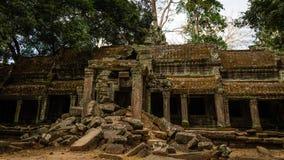 Den stupade galleribyggnaden av templet för Ta Prohm Royaltyfria Bilder