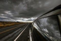 In den Sturm Stockbilder