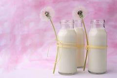 Den sunda drinken tjänade som i en flaska med rått helt i en bunke som var organisk mjölka i utforma för flask- och blommamat fotografering för bildbyråer