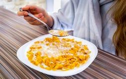 Den sunda frukostcornflakens med mjölkar Arkivfoton