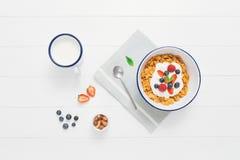 Den sunda frukosten med sädesslag och bär i en emalj bowlar Royaltyfri Fotografi