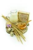 Den sunda frukosten - mjölka med honung och ägg Royaltyfri Bild