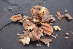 Den sunda och älskvärda wallnuten Arkivbilder