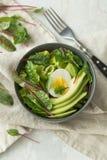 Den sunda vegetariska frukosten bowlar med sallad, avokadot och ägget, bästa sikt Rent äta, bantar matbegrepp Royaltyfri Fotografi