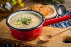 Den sura soppan som göras av rågmjöl Fotografering för Bildbyråer