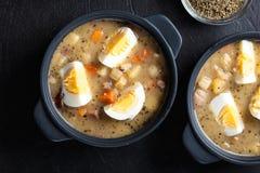 Den sura soppan som göras av rågmjöl med ägg Arkivbild