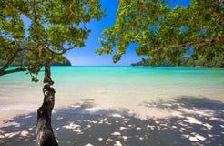 Den Surin ön Natonal parkerar Arkivfoton