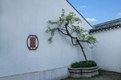 Den Suzhou piken parkerar Arkivfoton