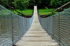 Den svängande bron Royaltyfri Bild