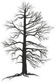 Den svart branchy treen med rotar royaltyfri illustrationer