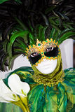 den svarta dräkten befjädrar grönt venetian Royaltyfria Bilder