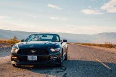 Den svarta Ford Mustang GT cabrioleten parkeras av den oändliga långa vägen Arkivbild