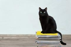 den svarta katten sitter på en bunt av tidskrifter I rummet på golvet arkivbilder