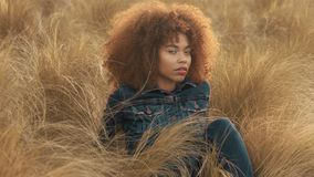 Den svarta kvinnan för det blandade loppet med stort afro lockigt hår i gräsmattafält med för hösthö för höjdpunkten torrt gräs o stock video