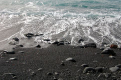 Den svarta sandstranden med vaggar och vinkar Arkivbild