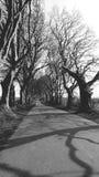 Den svartvita bilden av mörker slingra sig nordligt - Irland Co Antrim fotografering för bildbyråer
