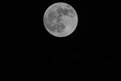 Den svartvita månen på bakgrund den mörka himlen Royaltyfria Bilder