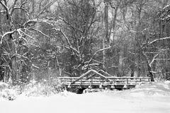 Den svartvita sceniska bilden av snö täckte bron i trän Royaltyfria Bilder