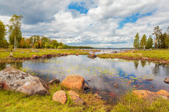 Den svenska sjön med vaggar i sommar Royaltyfria Foton