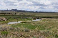 Den Sweetwater floden Arkivfoton