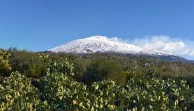 Den sydliga delsikten av snö täckte den Etna vulkan royaltyfri bild