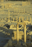 DEN SYRIEN PALMYRAROMAREN FÖRDÄRVAR Royaltyfri Bild