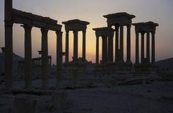 DEN SYRIEN PALMYRAROMAREN FÖRDÄRVAR Arkivbilder