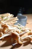 den tända backen plocka svamp wild Royaltyfri Fotografi