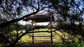 Den taklade picknicktabellen vid trädlemmar royaltyfri bild