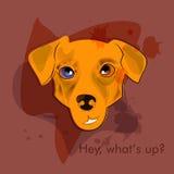 Den talande hunden Arkivbild