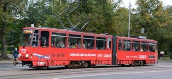 Den Tallinn spårvagnen Royaltyfria Bilder